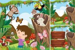 Três cenas da floresta com menino e animais Imagem de Stock Royalty Free