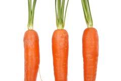 Três cenouras em um fundo branco fotografia de stock