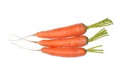 Três cenouras isoladas em um branco imagem de stock