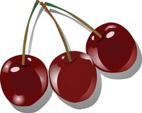 Três cerejas Fotos de Stock Royalty Free