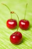 Três cerejas doces vermelhas Imagem de Stock