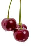 Três cerejas no branco Fotos de Stock Royalty Free