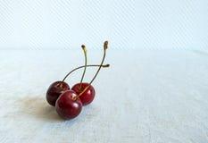 Três cerejas vermelhas frescas maduras junto em um fundo branco em um dia de verão imagens de stock royalty free