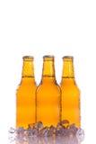 Três cervejas frescas com gelo Imagem de Stock Royalty Free