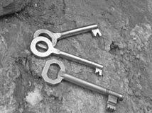 Três chaves Imagem de Stock