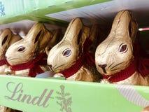 Três coelhos pequenos imagens de stock