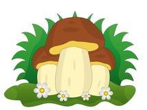 Três cogumelos com flores em um fundo branco Foto de Stock