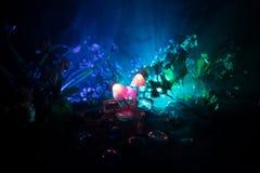 Três cogumelos de incandescência da fantasia no close-up escuro da floresta do mistério O tiro macro bonito do cogumelo mágico ou imagem de stock royalty free