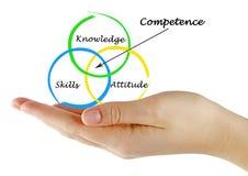 Três componentes da competência imagem de stock