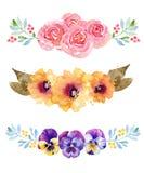 Três composições bonitas da flor ilustração royalty free