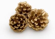 Três cones do pinho do ouro Imagens de Stock