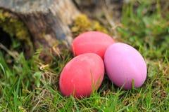 Três cor-de-rosa e o vermelho coloriram ovos da páscoa tradicionais na grama real Foto de Stock