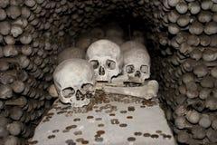 Três crânios e moedas foto de stock royalty free