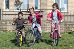 Três crianças em bicicletas Retrato de três ciclistas pequenos que montam suas bicicletas Três crianças no passeio do ciclo no ca Fotografia de Stock