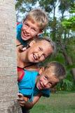 Três crianças olham para fora atrás de uma palma. Foto de Stock