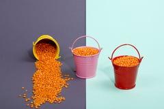 Três cubetas coloridos com os feijões alaranjados da lentilha Imagem de Stock Royalty Free