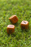 Três cubos dos dados no fundo da grama Imagens de Stock