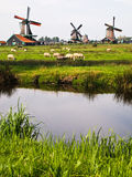 Três de moinhos de vento holandeses, Países Baixos Fotos de Stock Royalty Free