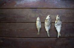 Três de peixes secados Fotos de Stock