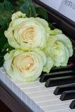 Três delicadamente rosas branco-verdes em chaves do piano Imagens de Stock
