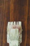 Três escovas de pintura Imagens de Stock Royalty Free