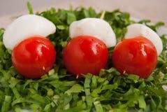 Três espetos com mussarela e tomates fotografia de stock