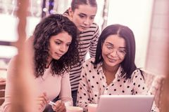 Três estudantes mestres bonitos agradáveis que olham o vídeo no portátil junto fotografia de stock