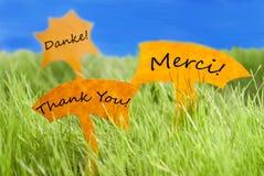 Três etiquetas com agradecem-lhe em línguas diferentes e no céu azul Imagem de Stock Royalty Free