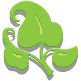 Três folhas verdes com sombra Imagem de Stock Royalty Free