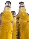 Três frascos da cerveja Fotografia de Stock
