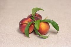 Três frutos do pêssego fotografia de stock royalty free