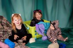 Três gatinhos pequenos Fotografia de Stock Royalty Free