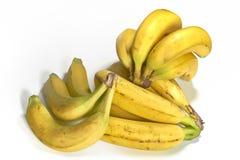 Três grupos das bananas frescas - tiro do estúdio no branco puro fotografia de stock royalty free