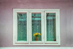 Três janelas de madeira com vidros verdes Imagem de Stock Royalty Free