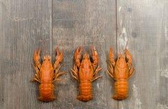 Três lagostas vermelhas em seguido na tabela de madeira velha Imagens de Stock