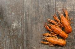 Três lagostas vermelhas no canto da esquerdo-parte inferior sobre Fotografia de Stock