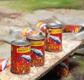 Três latas das sardinhas em uma construção abandonada em Malásia fotografia de stock