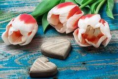 Três mão-cinzelaram o coração de madeira com tulipas do ramalhete Imagens de Stock Royalty Free