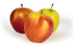 Três maçãs frescas isoladas no branco Imagem de Stock Royalty Free