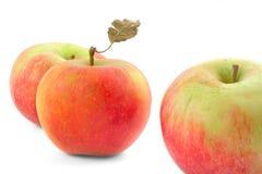 Três maçãs no branco Imagem de Stock