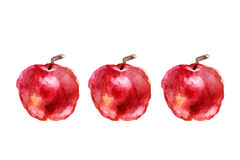 Três maçãs pintaram a aquarela fotografia de stock royalty free