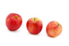 Três maçãs vermelhas Foto de Stock Royalty Free