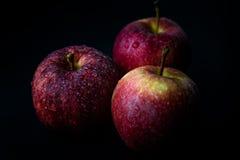 Três maçãs vermelhas Fotos de Stock Royalty Free