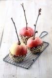 Três maçãs vermelhas frescas com galhos e chocolate Fotografia de Stock Royalty Free