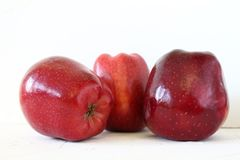 Três maçãs vermelhas frescas no fundo branco foto de stock