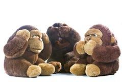 Três macacos Fotos de Stock