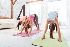 Três meninas atléticas que têm um exercício do grupo no gym fotografia de stock