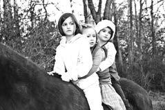 Três meninas em um cavalo imagens de stock