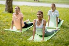Três meninas magros novas que fazem o esticão em esteiras da ioga na grama verde no parque no ar livre imagem de stock