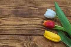 Três mentiras das tulipas amarelo vermelho e branco em uma tabela de madeira fotos de stock